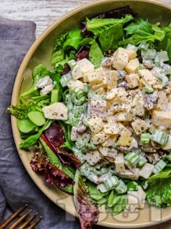 Зелена салата с пилешко месо, майонеза, целина, ябълки и орехи - снимка на рецептата